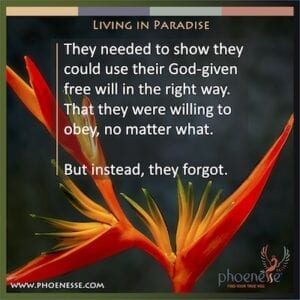 楽園に住む