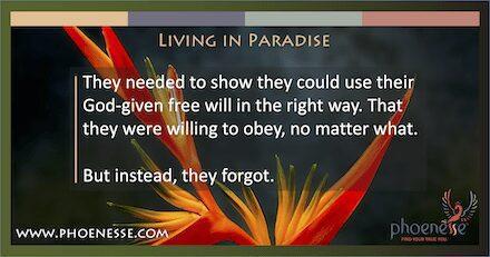 Viviendo en el paraiso