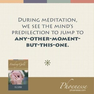 During meditation,  we see the mind's  predilection to jump to any-other-moment-but-this-one.
